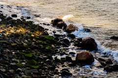岩石海岸线纹理详细资料对比 库存照片