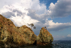 岩石海岸线, Gocek,土耳其 免版税库存图片