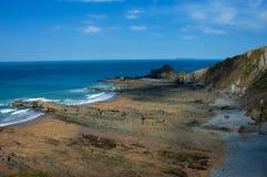 岩石海滩的峭壁 免版税库存照片