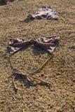 岩石海滩的比基尼泳装 免版税库存图片