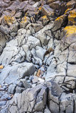 岩石海滨 免版税库存照片