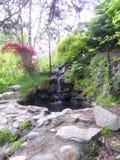 岩石瀑布,小与植被 库存照片