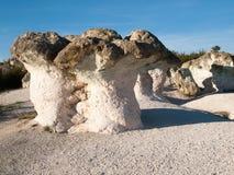 岩石现象 库存照片