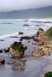 岩石球状植被 库存照片