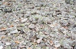 岩石瓦砾纹理背景  库存照片