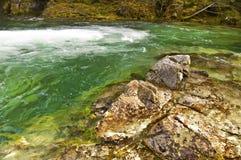 岩石用鲜绿色水 免版税库存照片