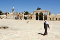岩石的圣殿山和圆顶在耶路撒冷以色列 免版税库存照片