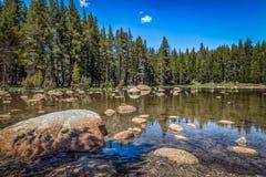 岩石的池塘 库存图片