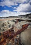 岩石的海岸线 免版税库存图片
