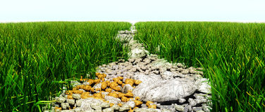 岩石的路 免版税库存照片