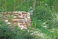 岩石监视 库存图片