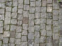 从岩石石头的路在Dubno镇  方形的形式的石头 调遣结构树 库存图片