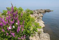 岩石码头在湖 库存照片