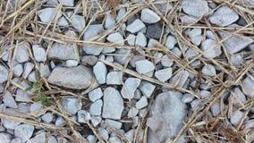 岩石秸杆 免版税库存图片