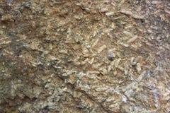 岩石米化石泰国 免版税库存图片