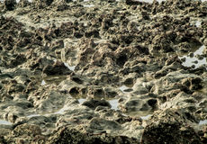 岩石纹理在海海滩的 库存图片