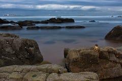 岩石船岸 库存照片