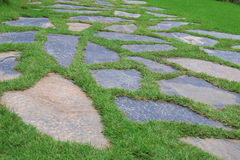 岩石草坪 库存图片