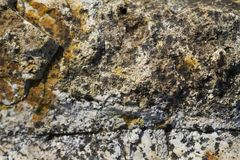 岩石表面难看的东西纹理 免版税图库摄影