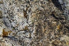岩石表面难看的东西纹理 免版税库存图片