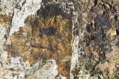 岩石表面难看的东西纹理 库存图片