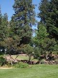 岩石被围住的庭院在公园 免版税库存图片