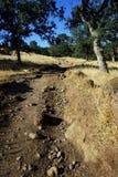 岩石足迹在一个晴天 库存图片