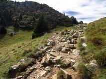岩石足迹 库存图片
