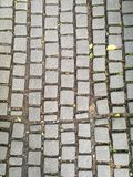 岩石路在英国庭院里 免版税库存图片