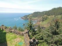 岩石陆岬和海浪 免版税库存图片