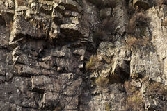 岩石面孔细节 免版税图库摄影