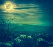 岩石风景反对蓝天和满月的在wildernes上 库存图片