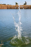 岩石飞溅在水中 免版税库存图片