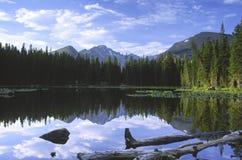 岩石高山湖的山 免版税库存图片