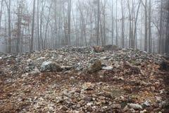 岩石鹰肖象土墩地面看法  库存照片