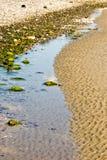 岩石,桑迪海岸线 图库摄影