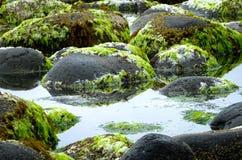 岩石水池1 库存图片