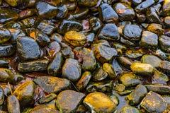 岩石水池  图库摄影
