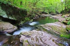 岩石绿色山风景绿洲小河 免版税库存图片
