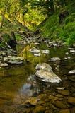 岩石细节在水中在黑河峡谷 免版税库存照片