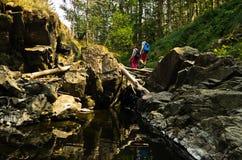 岩石细节在水中在黑河峡谷 库存照片