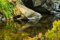岩石细节在水中在黑河峡谷 免版税图库摄影