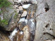 水岩石 免版税图库摄影