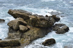 岩石` s生活的故事 库存照片