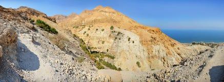 岩石Ein Gedi在死海附近的以色列 图库摄影