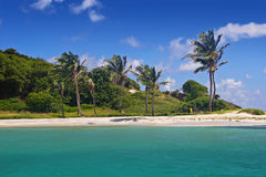 岩礁多巴哥 免版税库存图片