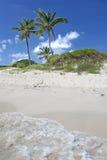 岩礁多巴哥 库存照片