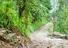 岩质岛村庄路,Jhalong宿营地,Suntalekhola Samsing,噶伦堡,西孟加拉邦,印度在Neora谷附近位于 免版税库存图片