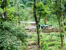 岩质岛村庄,Jhalong阵营,Suntalekhola Samsing,噶伦堡,西孟加拉邦,印度在Neora谷国立公园附近位于 免版税库存照片