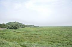 岳阳市,湖南中国 免版税库存图片